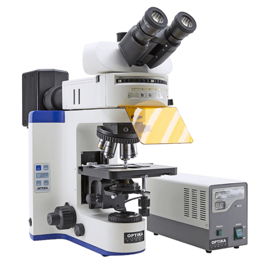 Флуоресцентный микроскоп B-1000 FL-HBO Optika Microscopes