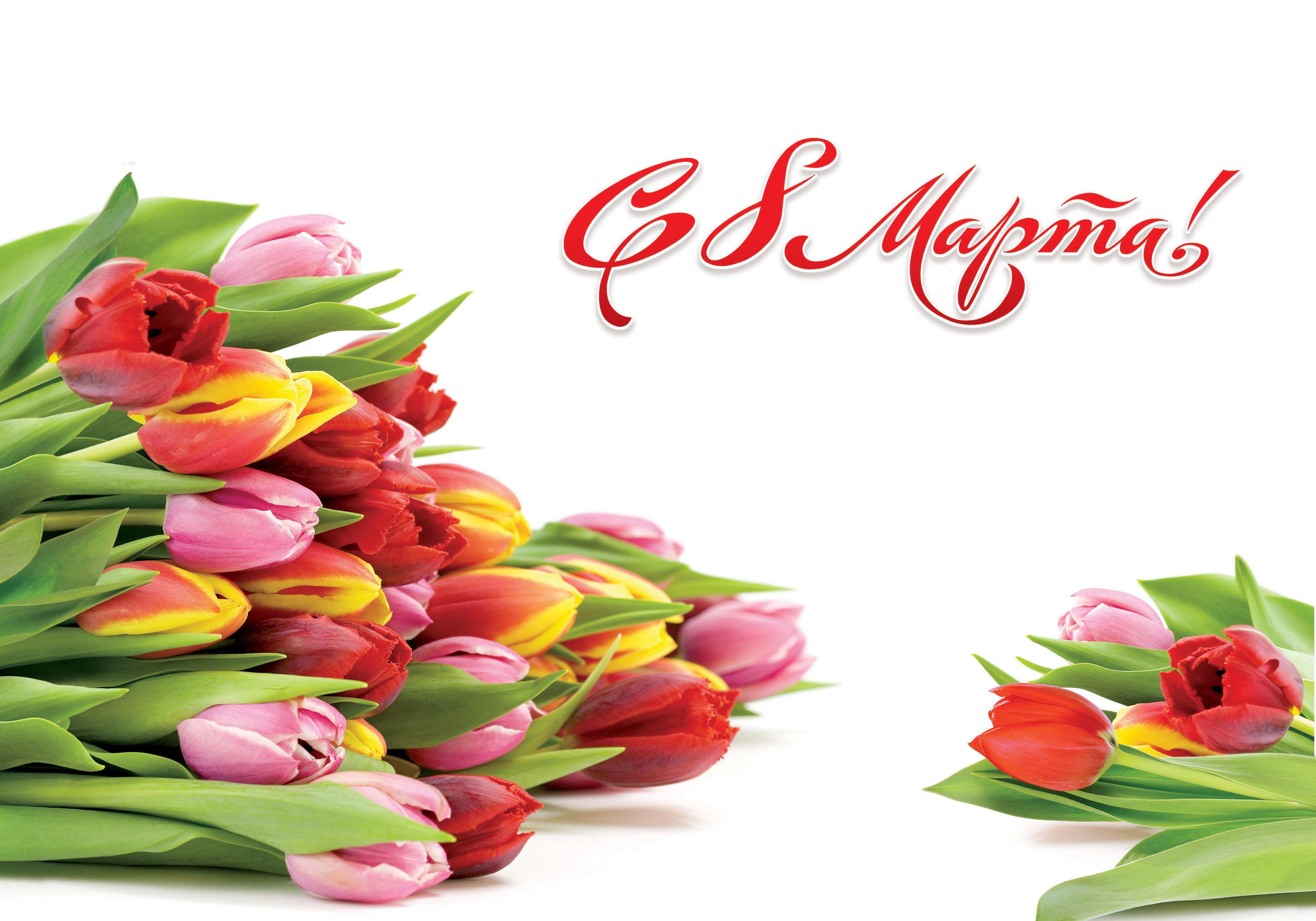 С праздником весны, милые женщины!