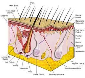 Как действует лазерная терапия