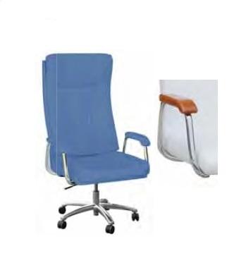 Стул для кабинета V013BAB